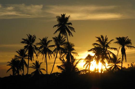 pirosakos: Praia do Forte