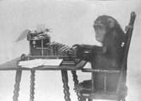 freddyD: Monkey-typing