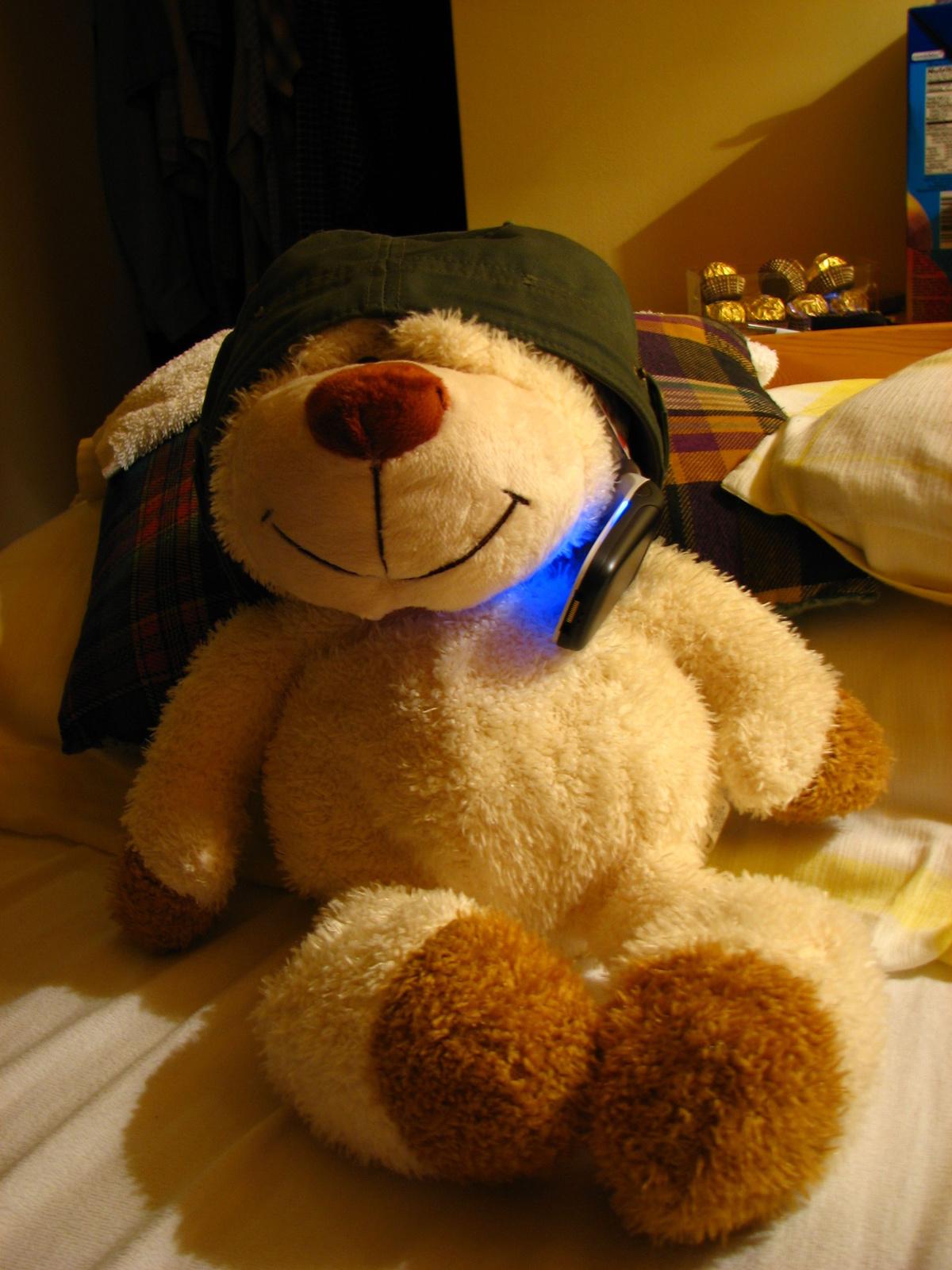 Telkós medve