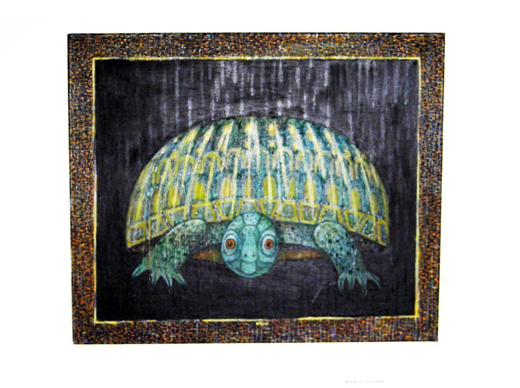 Bikácsi Daniella-teknős